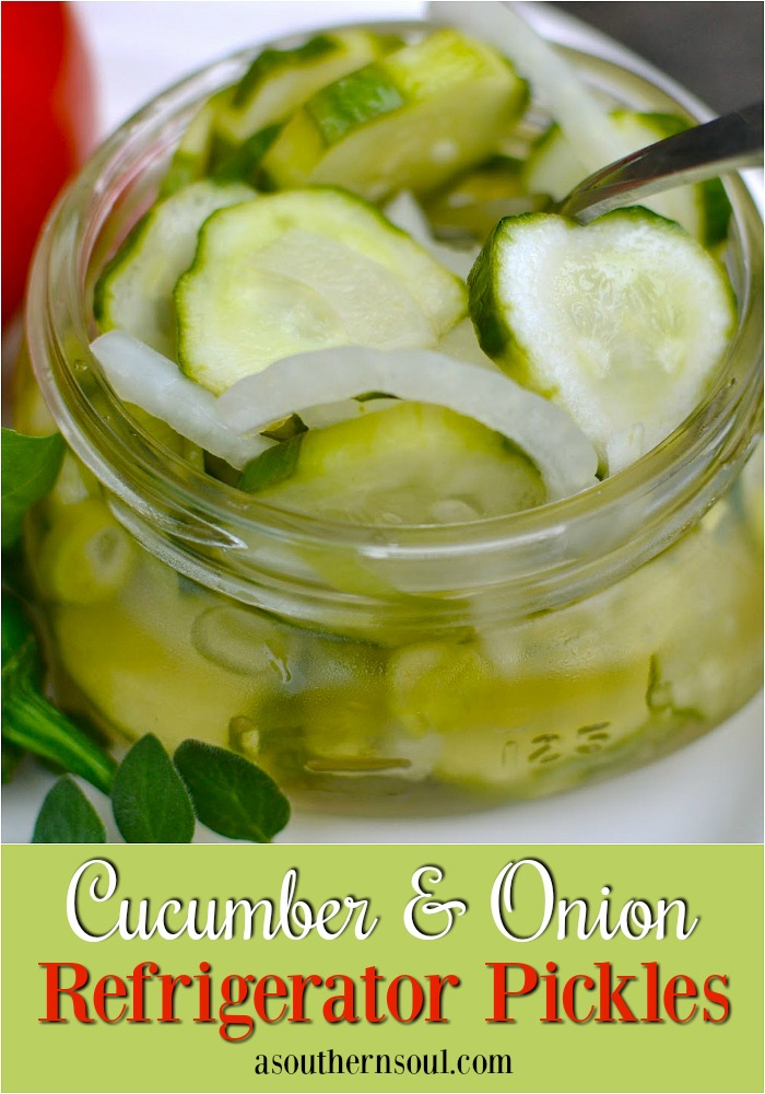 Cucumber & Onion Refrigerator Pickles