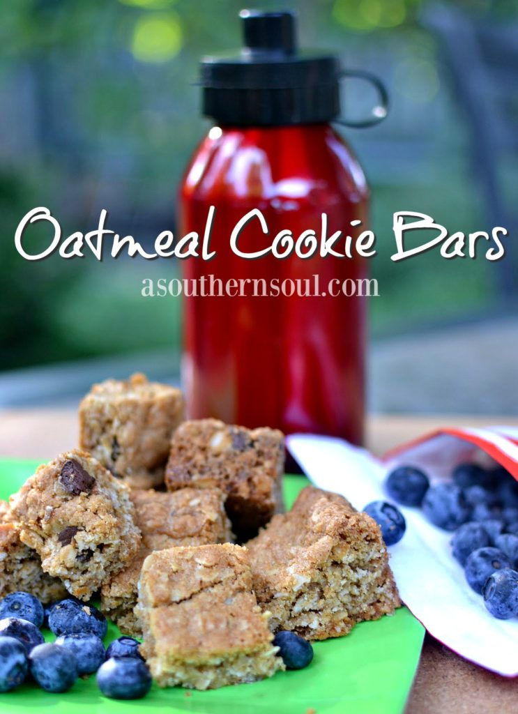 best oatmeal cookie bars