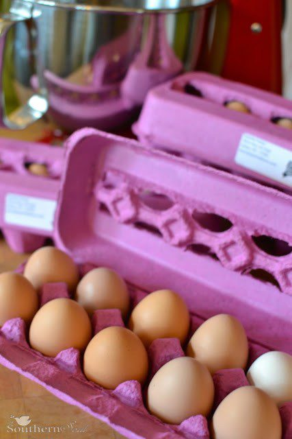 Fresh Eggs & Storage Tips