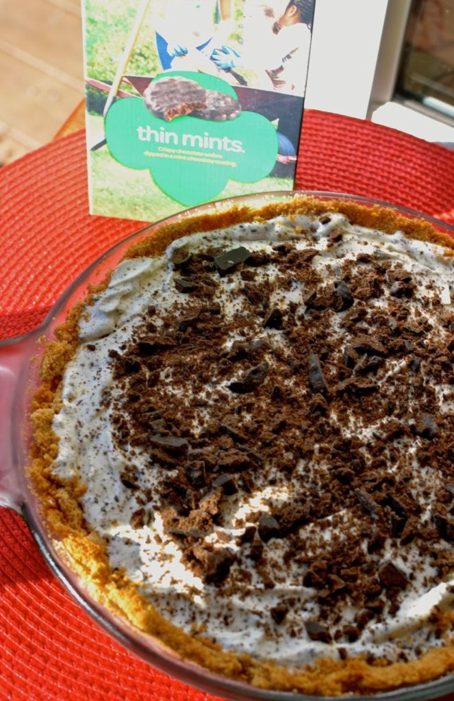 A Southern Soul | Thin Mints Ice Cream Pie
