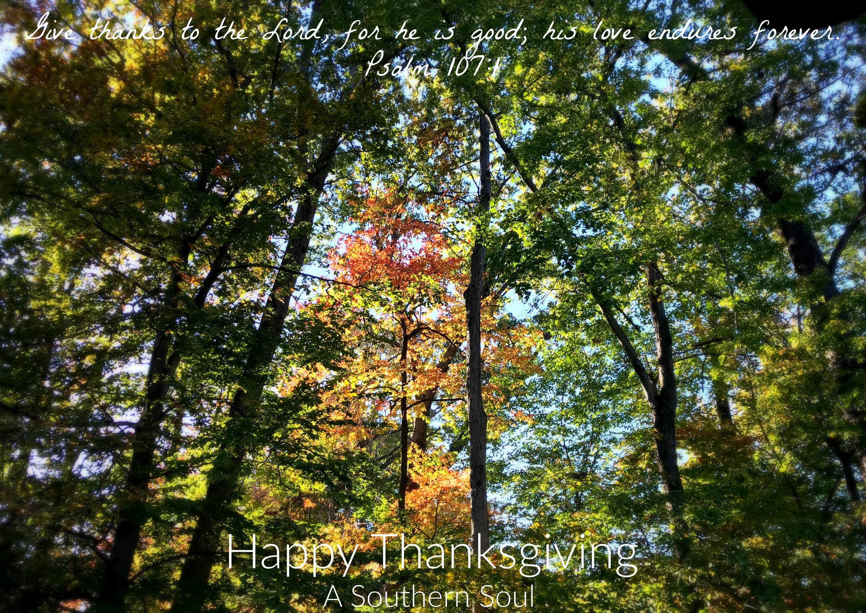 happy-thanksgiving-leaves-2016