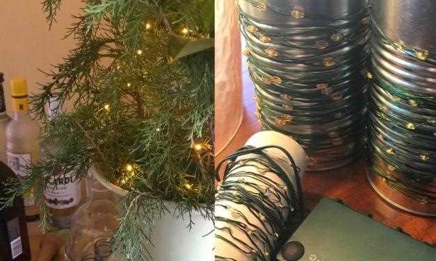 Wire LED Light Storage