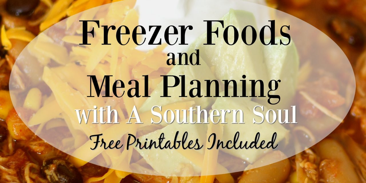 Freezer Foods and Meal Planning With A Southern Soul