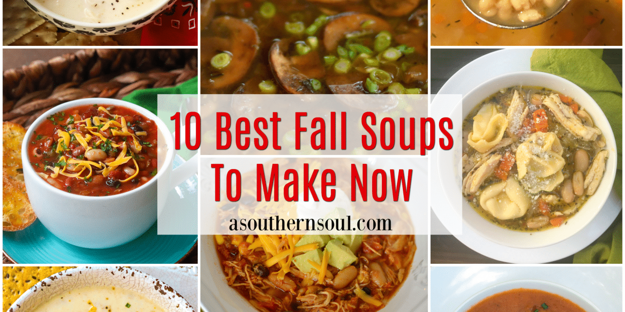 10 Best Fall Soups To Make Now